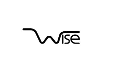 Wise LLC